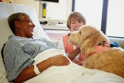 Pets Benefit Your Health
